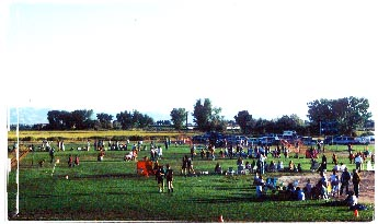 Crowd of People on Soccer Field
