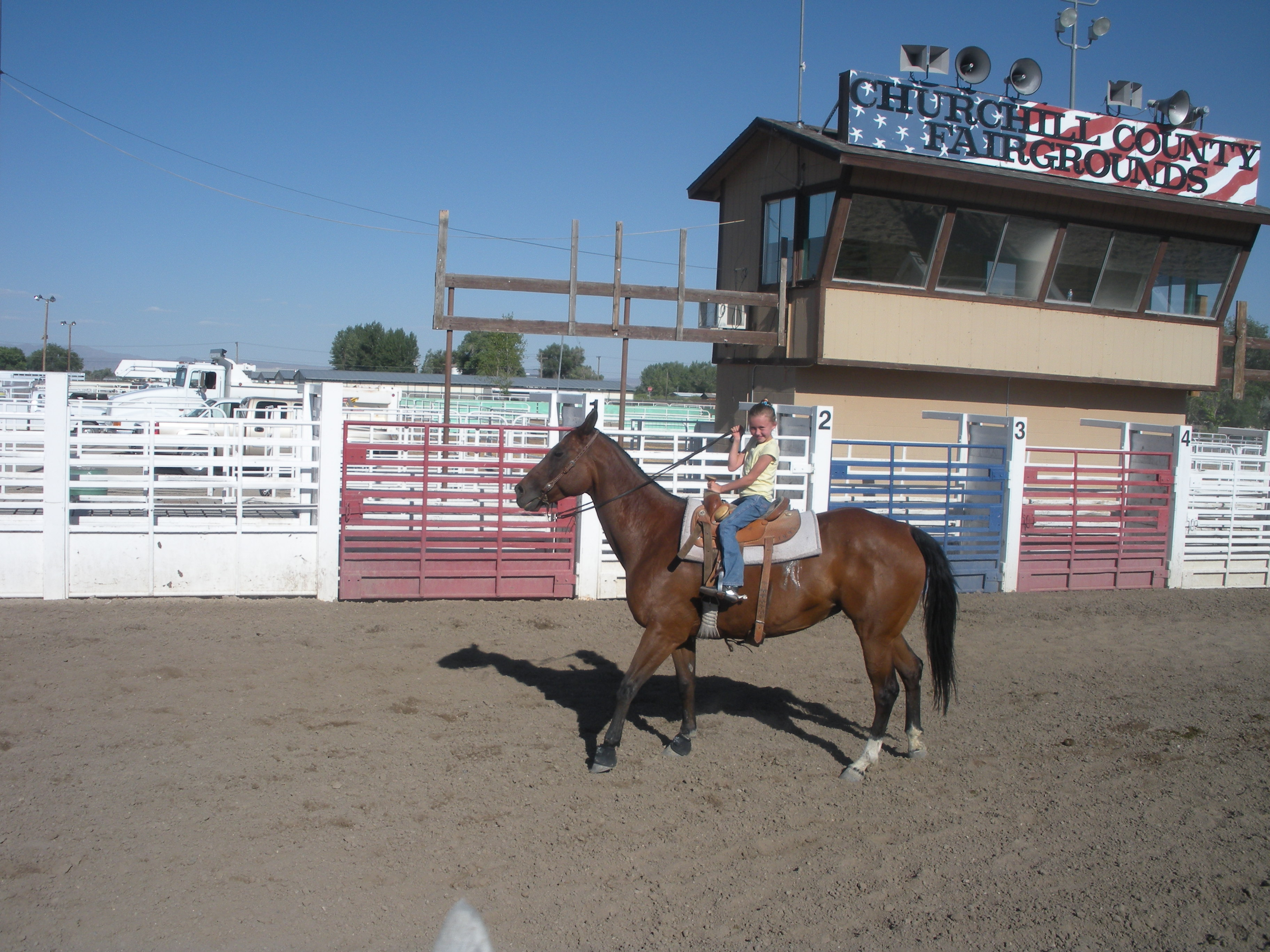 Girl on Horse in Arena