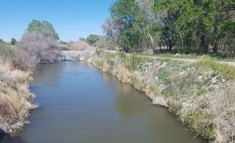 Water in an irrigation  canal
